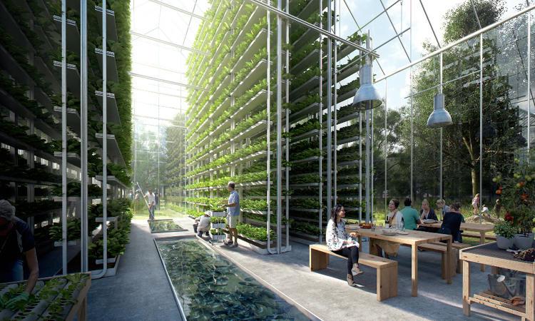3060167-slide-5-this-new-neighborhood-will-grow-its-own-food-power-itself