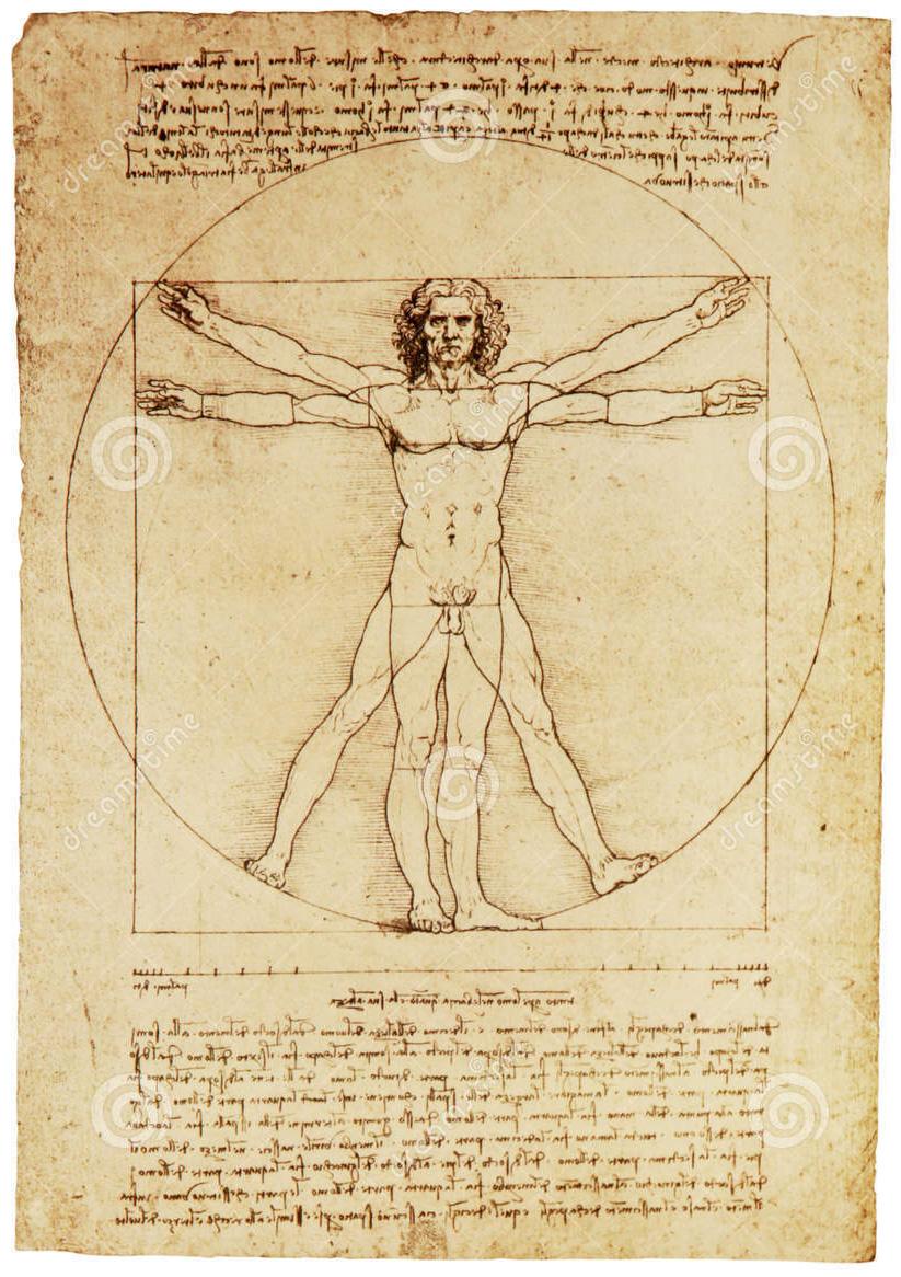 Vitruvian_Man_Da_Vinci