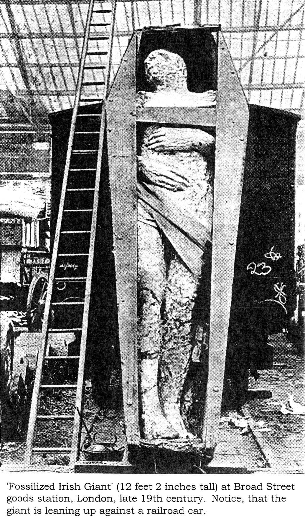 Kist met Ierse mummy leunt tegen treinstel.