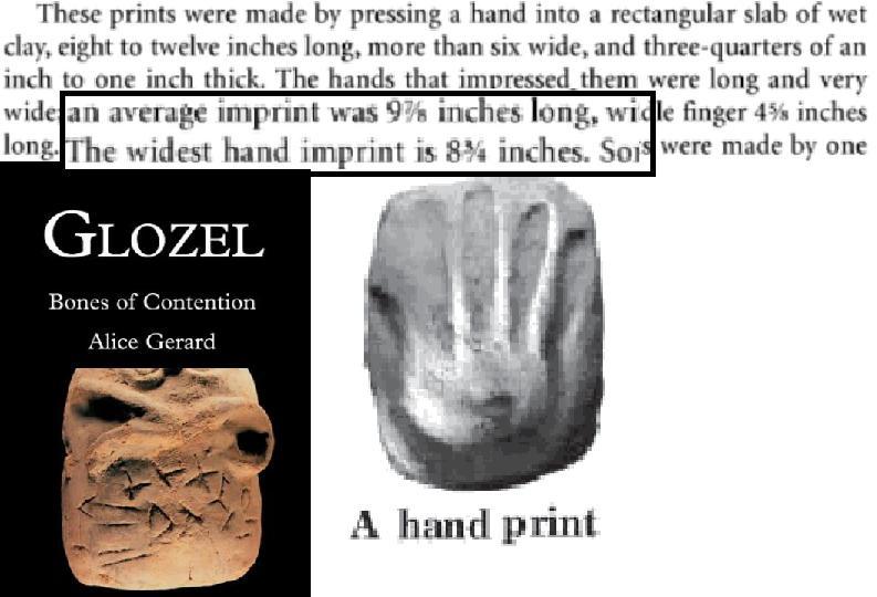 De gemiddelde handafdruk in Glozel was 25 cm, maar de breedste handafdruk was ruim 22 cm.