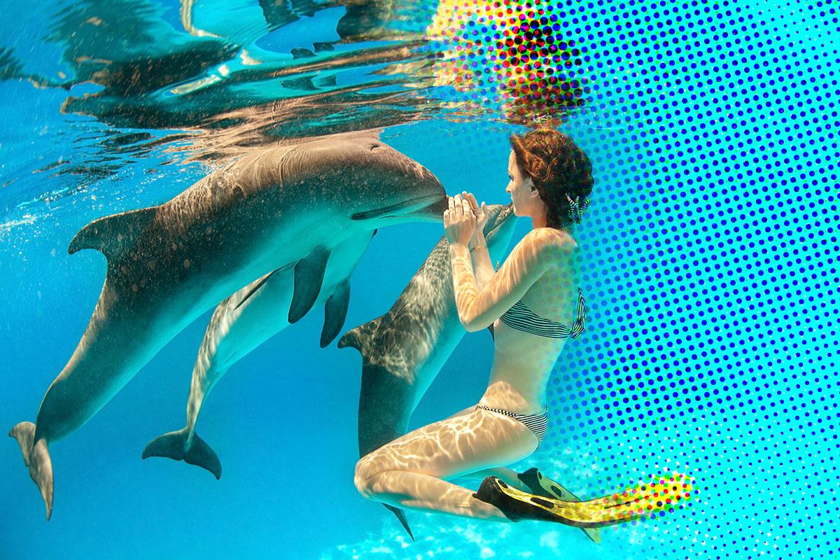 Zijn dolfijnen eigenlijk oceanische lichtwezens? - Ellaster