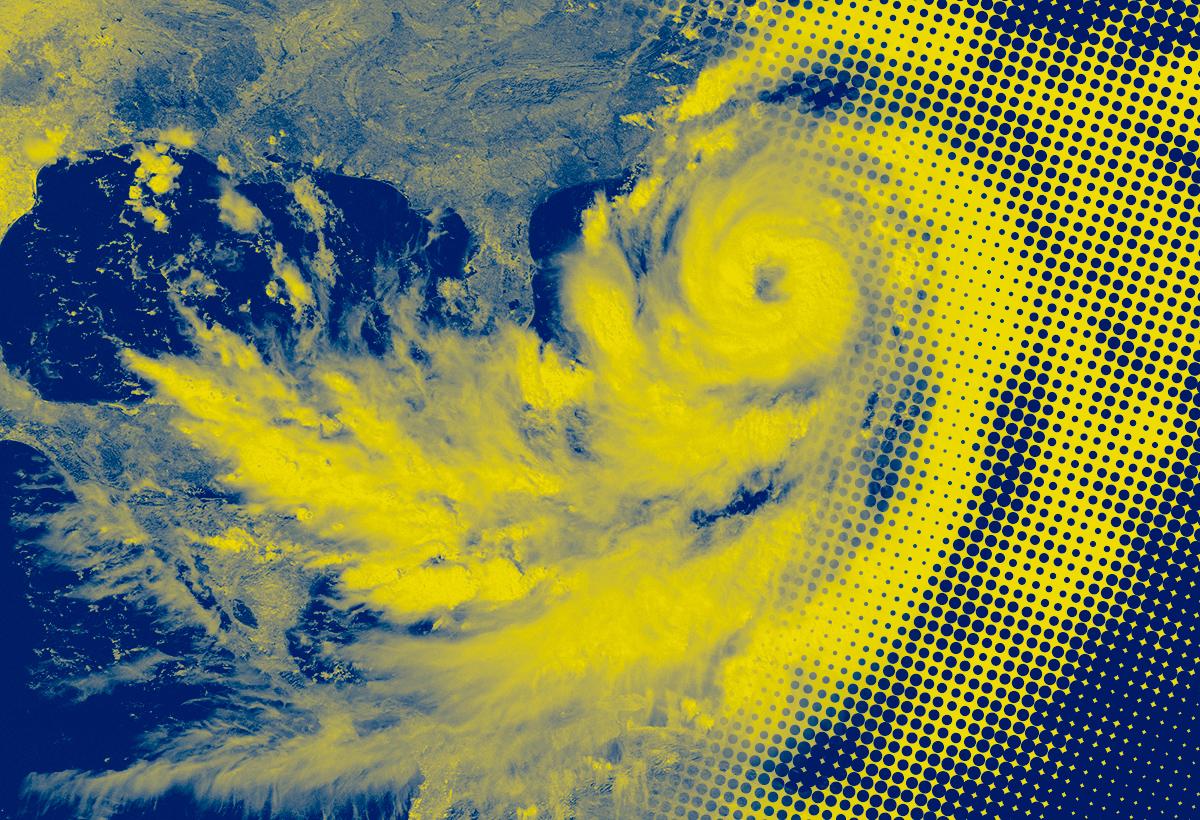 Thomas Williams: We zijn in het oog van de storm