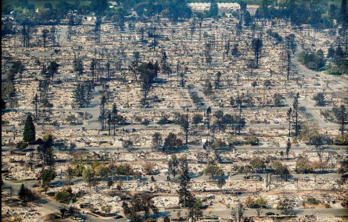 Volledig verwoest dorp, waarbij bomen grotendeels onaangetast zijn.
