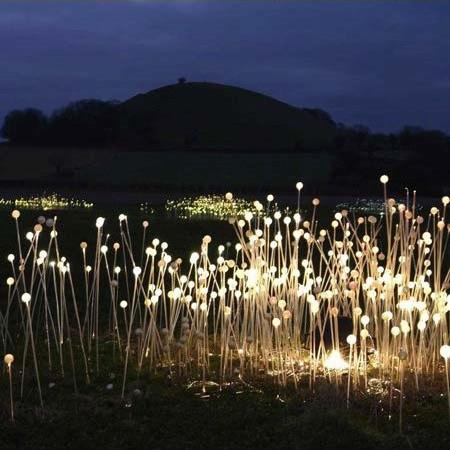 Lichtinstallatie van Bruce Munro