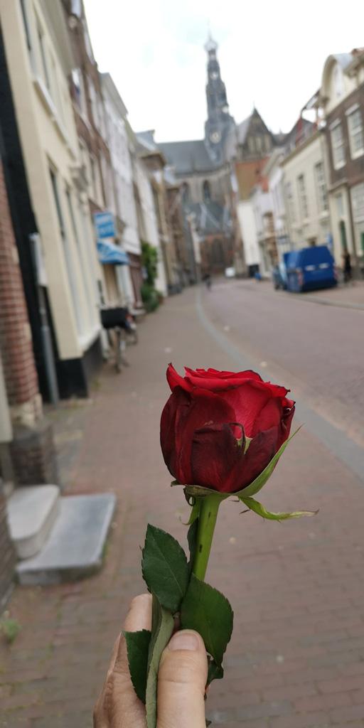 Op-weg-naar-stadhuis-Haarlem_21-6-2020